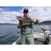 Bob 4.6lb Brown fly fishing
